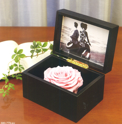 クレイ/Photo box 17L11.5W BLACK/680-779-802【01】