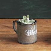 SPICE/BLOOM MUG POT/FZH706【01】