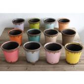SPICE/COLORS PLANTER 12色アソート/BFGY4118【01】