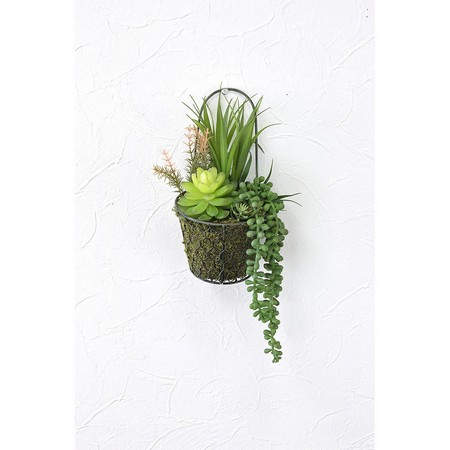 【造花】SPICE/DECOR IMITATION MIXED CACTUS WIRE BASKET/TADY5160【01】