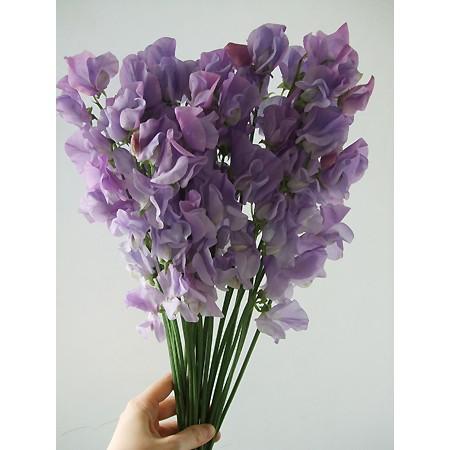スイトピー グレースなど(薄紫)
