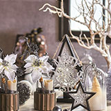 Have you decorated for Christmas?